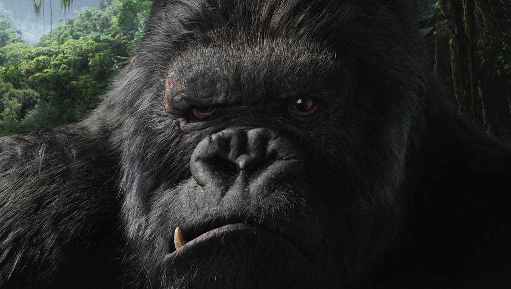 King Kong (dvd et blu-ray/ Universal Pictures)