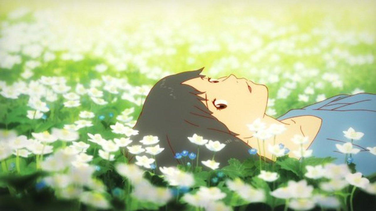 Chronique Blu Ray | Les enfants Loups, Ame & Yuki (Blu-Ray/ Kazé)