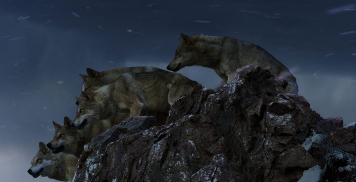 Le dernier loup |5 questions à Jean-Jacques Annaud